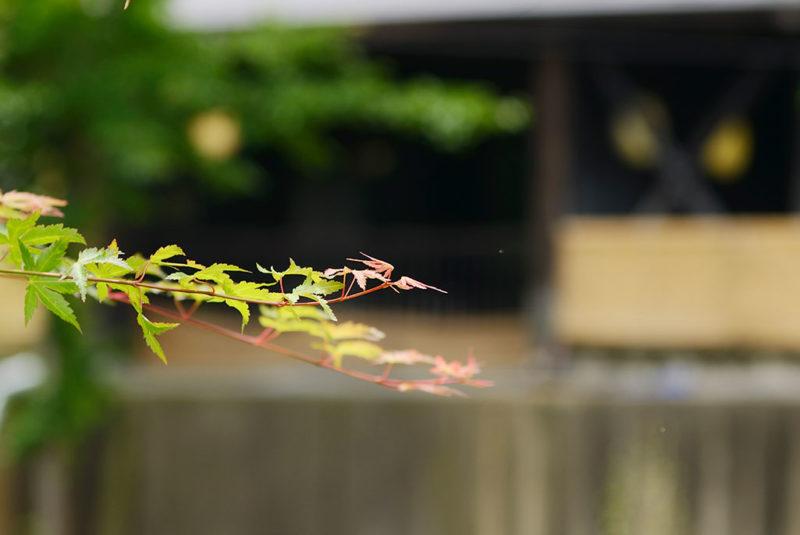 令和最初の大晦日は年越し営業を行います。